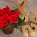 Cómo tejer una flor de pascua de ganchillo: patrón gratis
